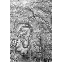 JLM_BW3634_1.jpg