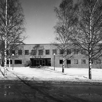 JLM_Ejneg1976.jpg